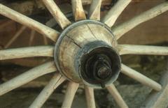 wheel2-wince.jpg