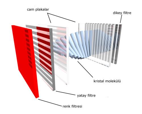 Свет от лампы с холодным катодом (CCFL) проходит через поляризационный фильтр и попадает в слой жидких кристаллов.
