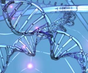 genom1