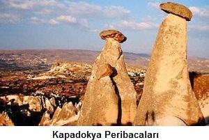 peri_bacalari