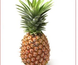 2243-Ananas