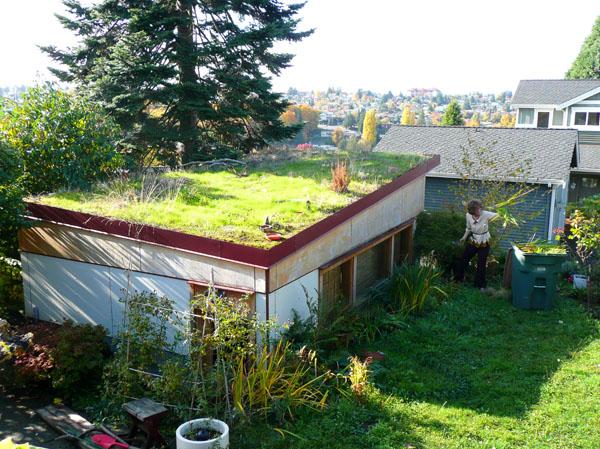 Yeşil Mimari Doğaya Saygılı Ve Verimli Alternatif Barınma