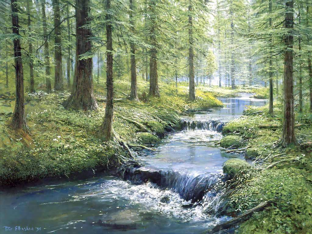 Her bölgesinde pek çok akarsu bulunan ülkemizde, yağışlı ...: www.bilgiustam.com/turkiyedeki-akarsular-ve-genel-ozellikleri