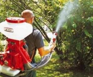 pestisit-zehir