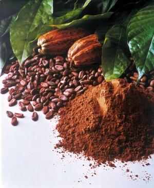 kakao3