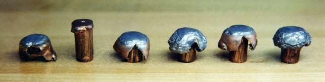 338-bullets2