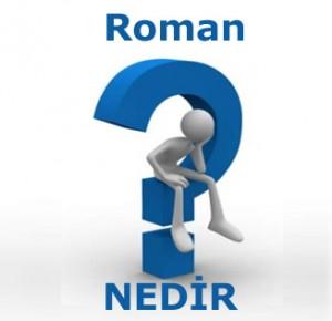 3737_roman-nedir