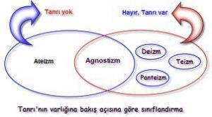 4265_teizm11