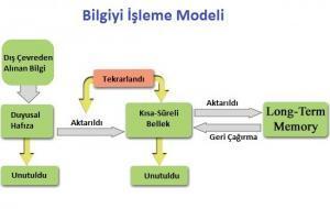 4481_bilgi_isleme_modeli
