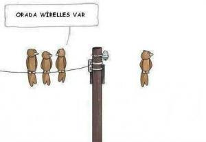 4532_orada-wireless-var-tel-uzerinde-duran-kuslar