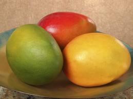 4737_mango