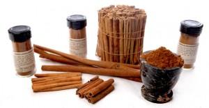 4933_family-cinnamon