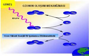 5080_ozon5
