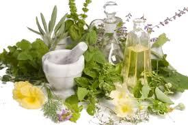 5149_herbs