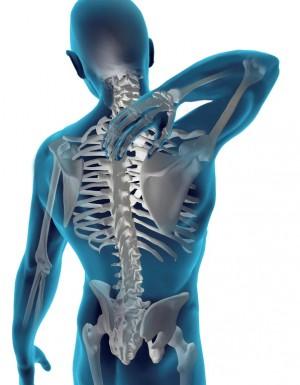5182_chiropractic (1)
