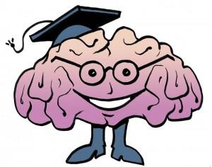 5252_brain2