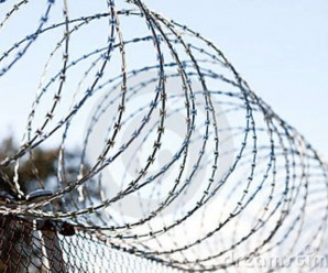 5255_coiled-barbed-wire-fence-13783565