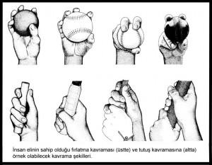 5264_kavrama