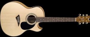 5268_akustik_gitar