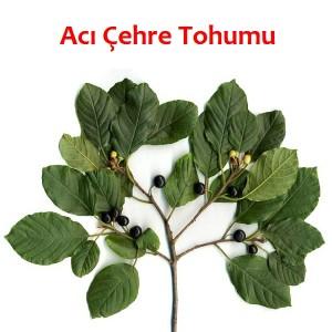 5286_aci_cehre_tohumu