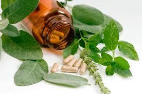 5290_herbal-pills