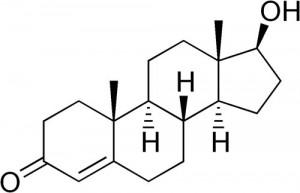 5690_testosteron