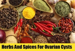 5713_herbs-and-spices-for-ovarian-cysts