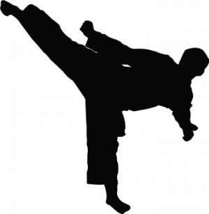 5761_martial-arts-kick