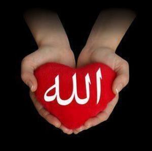 6025_allah_beautiful