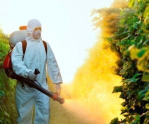 7393_large_article_worker_pesticide