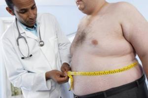 7456_obezite