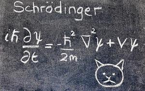7683_schrodinger