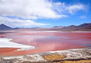 7766_laguna-colorada-bolivia