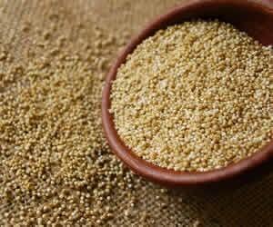 kinoa-ayni-adli-bitkinin-cekirdeklerinden-elde-edilmektedir