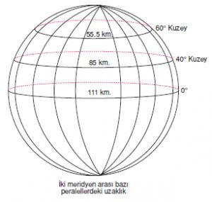 8021_meridyenlerinozellikleri