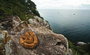 8170_ilha-da-queimada-grande-snake-island
