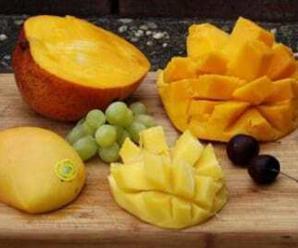 8352_mangonun-faydalari