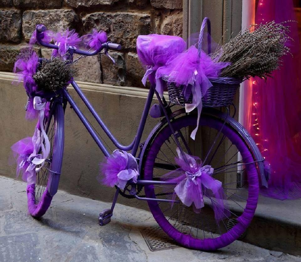 белых украшенный велосипед картинки помогут ребенку