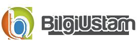 Bilgiustam.com