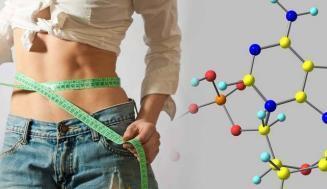 Leptin Eksikliği ve Leptin Miktarı Nasıl Artırılır?