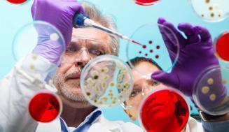 Antikolinerjiklerin Kullanıldığı Sağlık Koşulları ve Etkileri