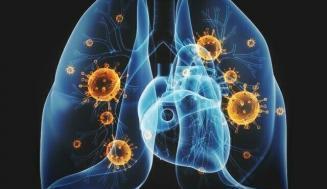 Coronavirus: Orta, Şiddetli ve Kritik COVID-19 Nedir?