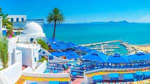Tunus'taki Gezilecek Yerler