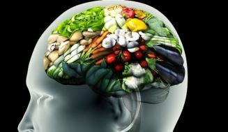 Açlık Hissinin Arkasındaki Bilim