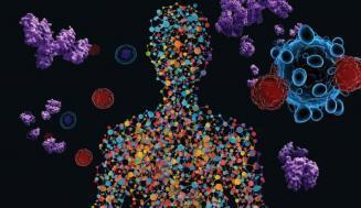 CAR T Hücreleri: Yapısı ve Kanser Tedavisinde Kullanımı