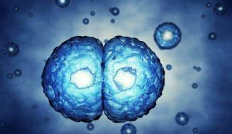 MicroRNA: Tanımı ve Hastalıkta Rolü
