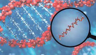 miRNA Replasman veya Restorasyon Tedavisi