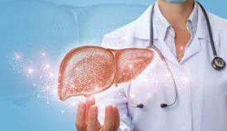 Yağlı Karaciğer Nasıl Bir Hastalıktır? Sebepleri, Belirtileri, Yapılması veya Yapılmaması Gerekenler