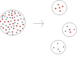 Genetik Sürüklenme Nedir?