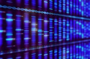 DNA Ekstraksiyon Yöntemleri